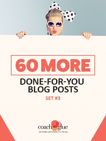 60 Done for You PLR Blog Posts Premium PLR Blog Content
