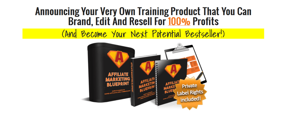 Affiliate Marketing Blueprint PLR Business in a Box Package