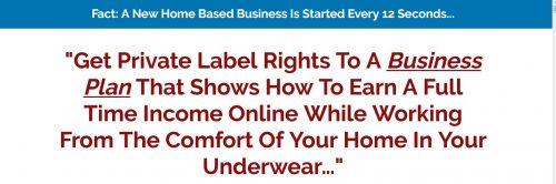 Full-Time Online Income PLR Videos