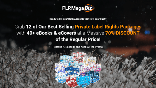 12 Business In A Box Blowout (PLR MEGA Biz)