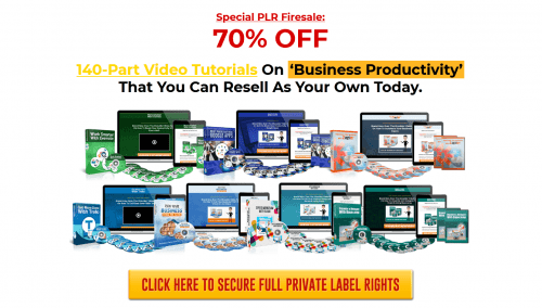Business Productivity PLR Video Products Bundle