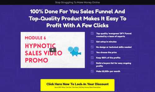 Modern Niche Marketing PLR Sales Funnel