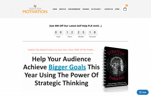 Strategic Thinking PLR Special Premium PLR Bundle