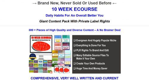 Daily Habits For An Overall Better You PLR eCourse Pack