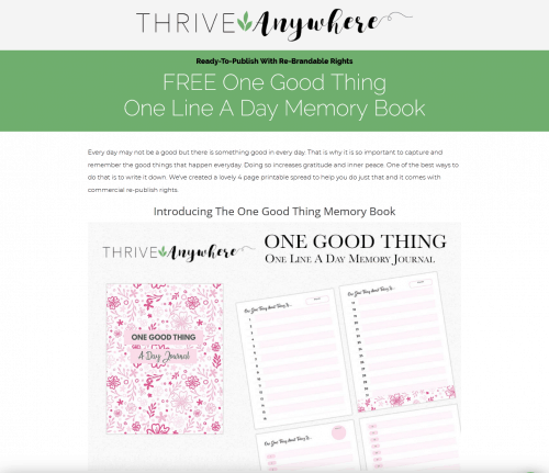 One Good Thing Free PLR Journal