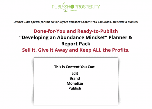 Developing an Abundant Mindset PLR Report and Planner