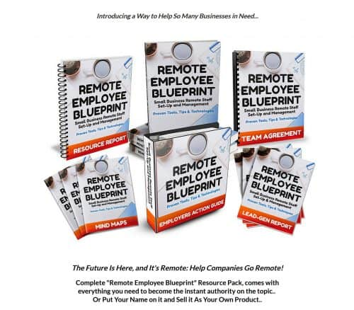 Remote Employee Blueprint PLR Bundle