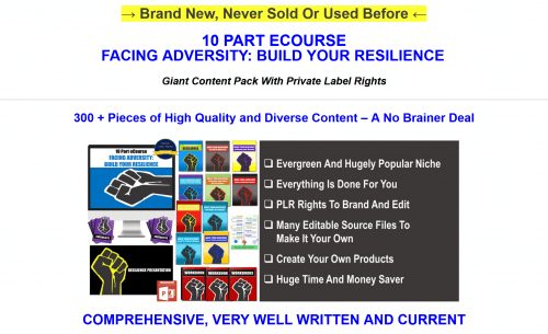 Facing Adversity Build Your Resilience Huge PLR Package