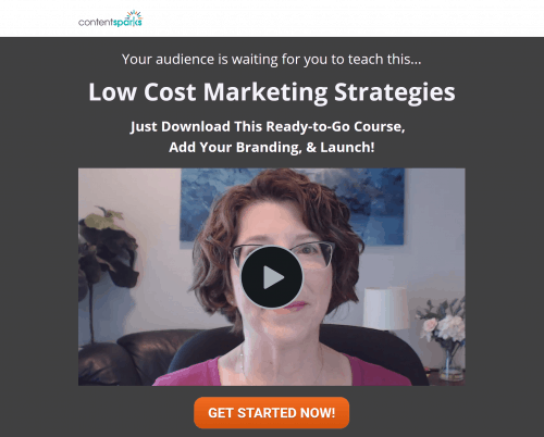 Low Cost Marketing Strategies Brandable Coaching Program PLR