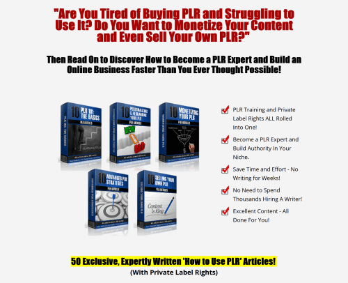 PLR On PLR From Beginner to Pro – Learn To Use PLR Package