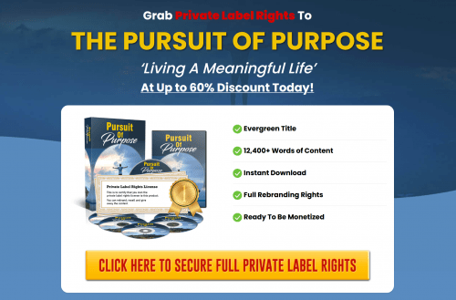 Pursuit of Purpose Living A Meaningful Life PLR Package