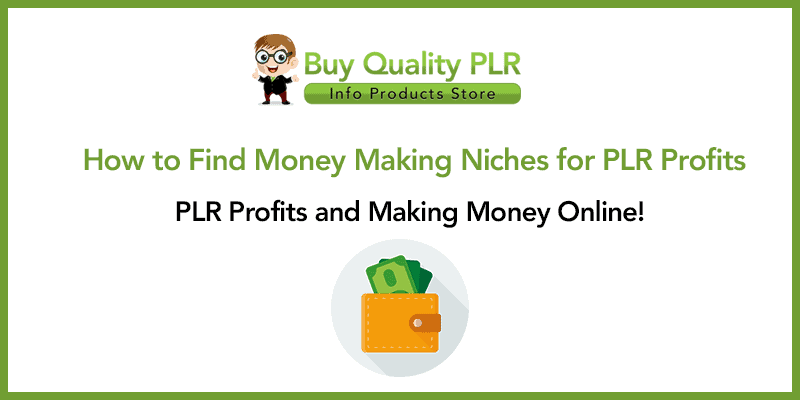How to Find Money Making Niches for PLR Profits