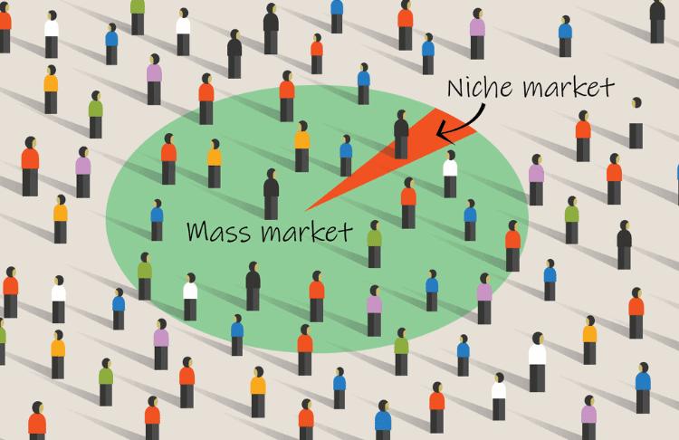 Niche Marketing PLR, finding your niche plr, online business plr, make money online plr, internet marketing plr