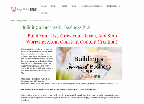 30 Days Building a Successful Business Plan PLR Bundle
