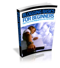 Blogging Basics for Beginners With PLR