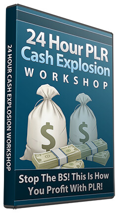 The 24 Hour PLR Cash Explosion BRR
