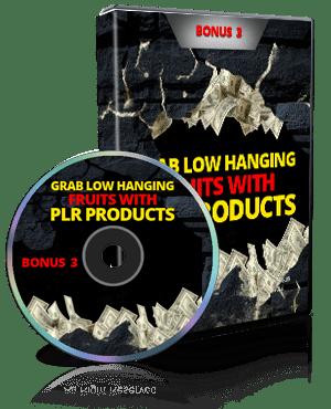 PLR Marketing Video Bonus 3