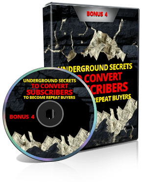 PLR Marketing Video Bonus 4