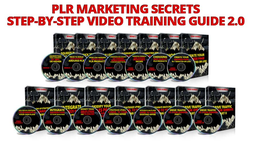 PLR Marketing video Package