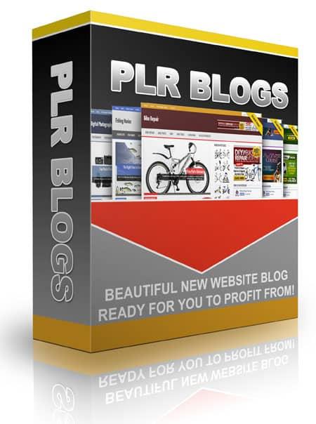 PLR Blog