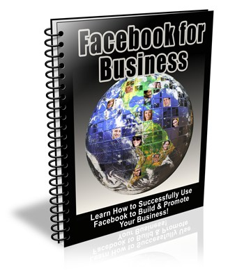 Facebook Marketing For Business PLR Newsletter eCourse