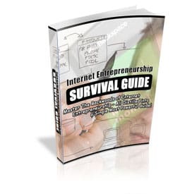 Internet Entrepreneurship Survival Guide PLR eBook