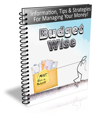 Budget Wise PLR Newsletter eCourse