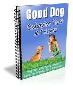 Good Dog Tips and Tricks PLR Newsletter eCourse