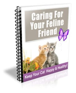 Caring For Your Feline Friend PLR Newsletter eCourse