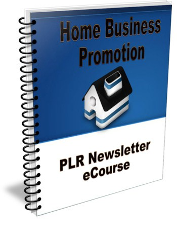Home Business Promotion PLR Newsletter eCourse