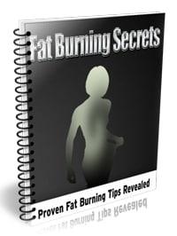 Fat Burning Secrets PLR Book