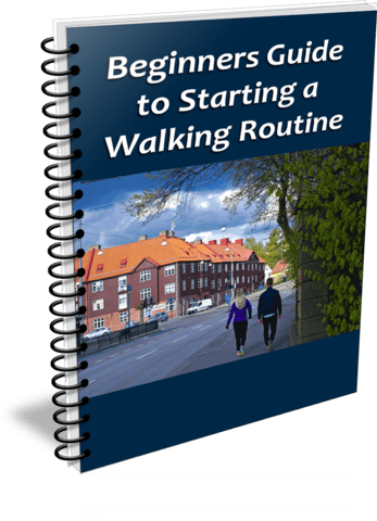 Top Quality Beginners Guide to Walking PLR Report RingBinder