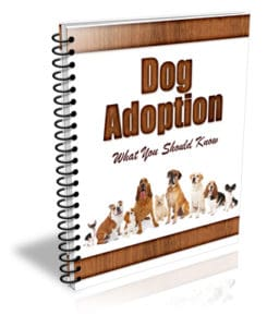 Dog Adoption PLR Newsletter eCourse