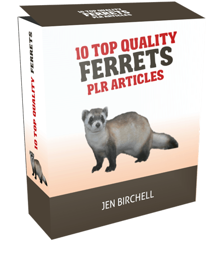 10 TOP QUALITY FERRETS PLR ARTICLES