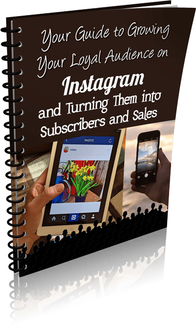 Guide-to-Instagram-Audience-eCover-3
