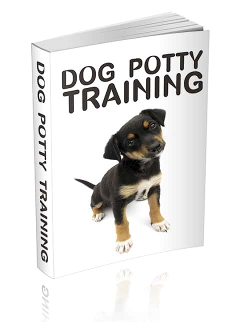 Dog Potty Training Unrestricted PLR eBook