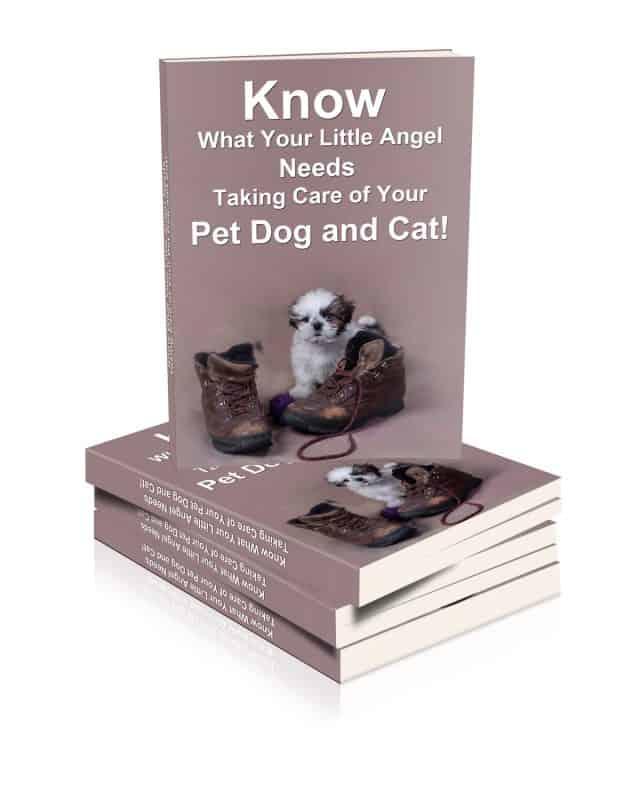 Taking Care of Your Pet Dog and Cat Unrestricted PLR eBook