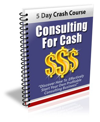 Consulting For Cash PLR Newsletter eCourse