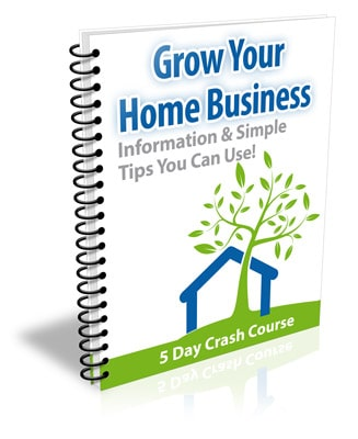 Grow Your Home Business PLR Newsletter eCourse