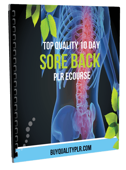 Top Quality 10 Day Sore Back PLR Ecourse