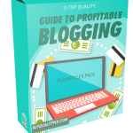 15 Top Quality Guide to Profitable Blogging PLR Articles