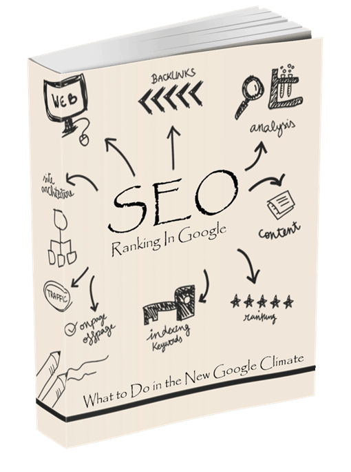 SEO Ranking In Google PLR eBook