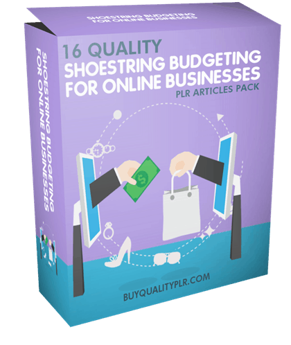16 Quality Shoestring Budgeting For Online Businesses PLR Articles Pack