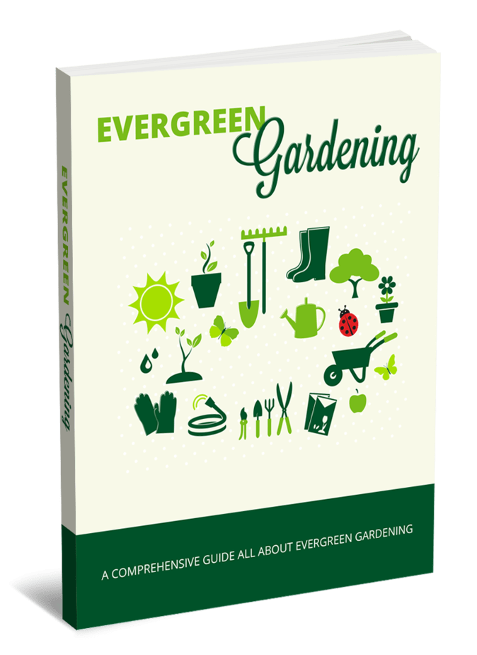 Evergreen Gardening PLR eBook and Squeeze Page