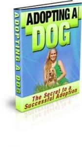 Adopting A Dog Unrestricted PLR eBook