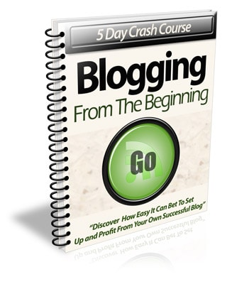 Blogging From The Beginning PLR Newsletter eCourse
