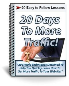 20 Days To More Traffic PLR Newsletter eCourse