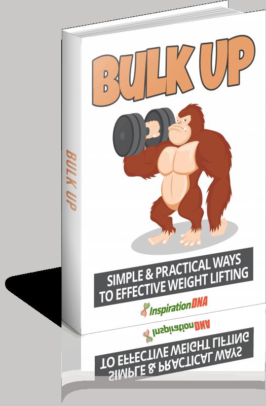 Bulk Up Ebook