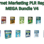 Internet Marketing PLR Reports Mega Bundle V4