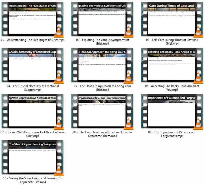 grief plr video course